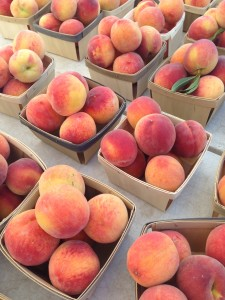 Chicago Suburb Farmers Market Guide