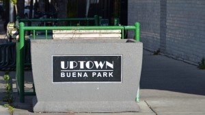 Chicago Neighborhood Guide – Buena Park